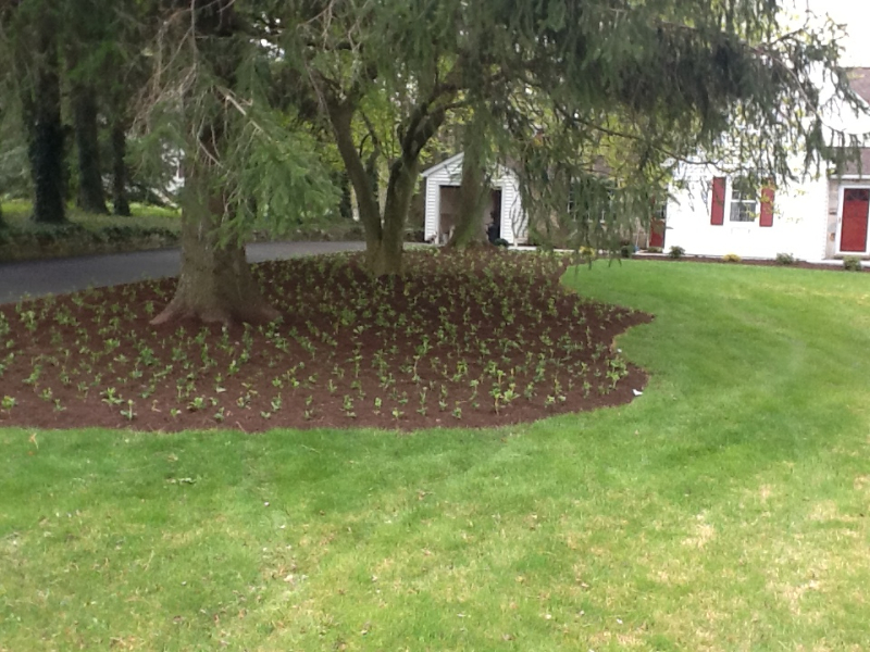 Landscaping Forest Hill Md : Landscape installation lakeside landscaping
