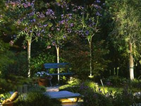 Landscape lighting company in Maryland